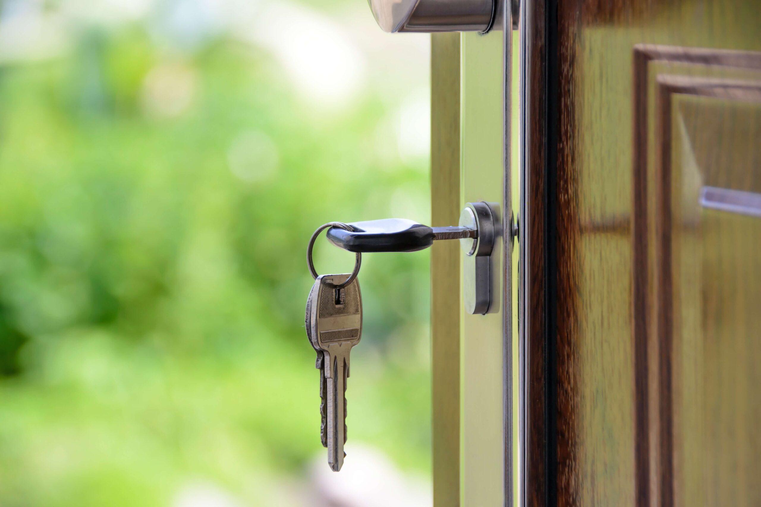 auckland-property-market